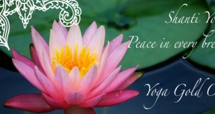 yoga, meditation, retreats, workshops