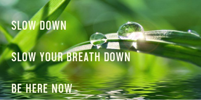 relax slow down